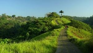 Paket honeymoon Bali 6 hari 5 malam